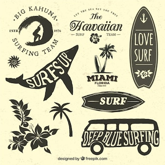 Collection de badges pour les surfeurs