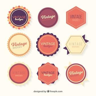 Collection de badges avec style vintage