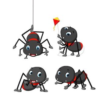 Collection de bande dessinée araignée