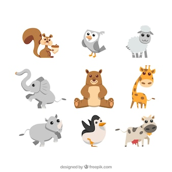 Collection de beaux animaux