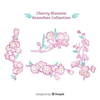Collection de branches de cerisiers