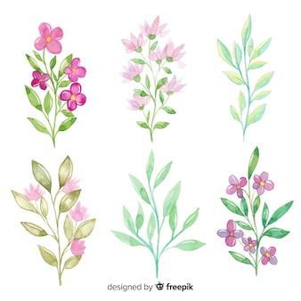 Collection de branches florales aquarelles
