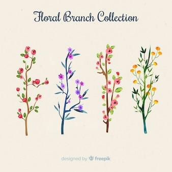Collection de branches florales