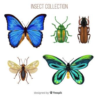 Collection de bugs colorés réalistes