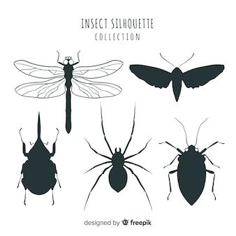 Collection de bugs
