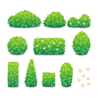 Collection de buissons verts avec des fleurs isolées.