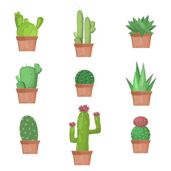 Collection de cactus en illustration vectorielle