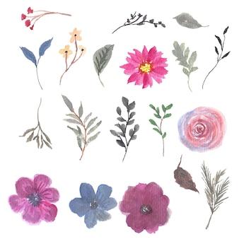 Collection de cadre de fleur aquarelle