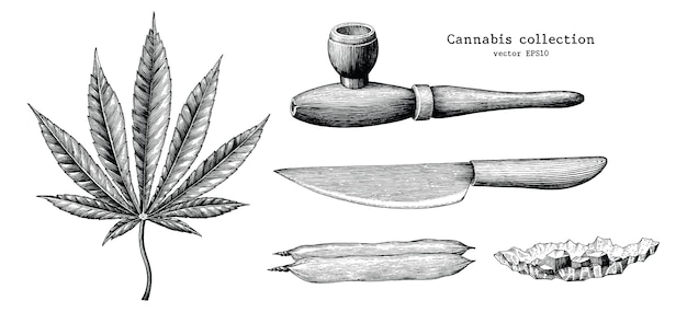Collection de cannabis main dessiner vintage isolé sur fond blanc