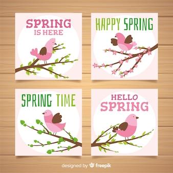 Collection de cartes de printemps d'oiseau