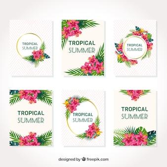 Collection de cartes tropicales