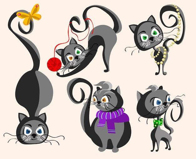 Collection de chats drôles