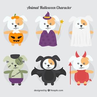 Collection de chien déguisé