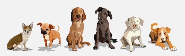 Collection avec des chiens mignons de différentes races