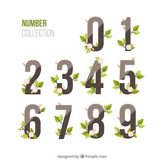 Collection de chiffres avec un style floral