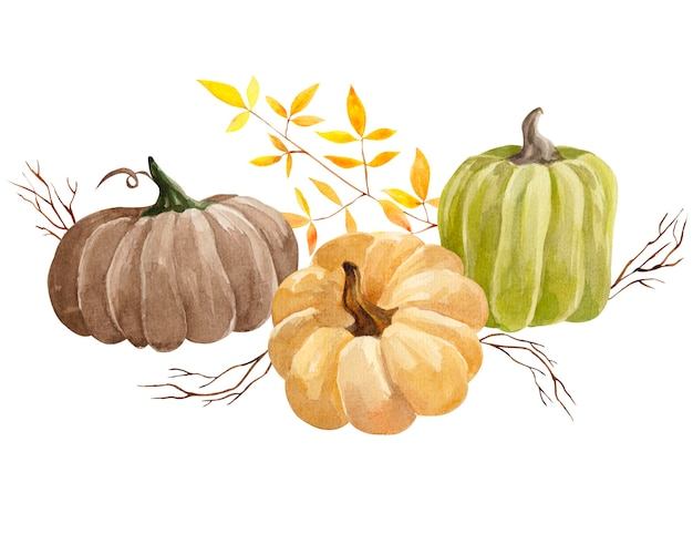 Collection de citrouilles et de feuilles d'automne aquarelle