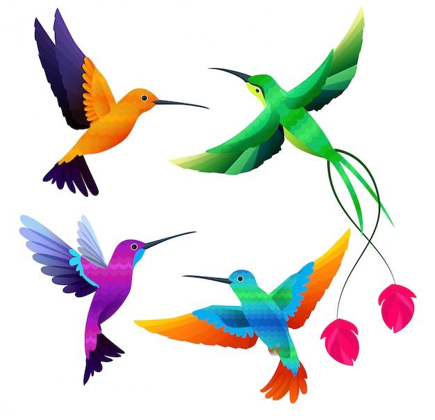 Collection de colibris. petits oiseaux exotiques tropicaux volant ensemble de dessin animé