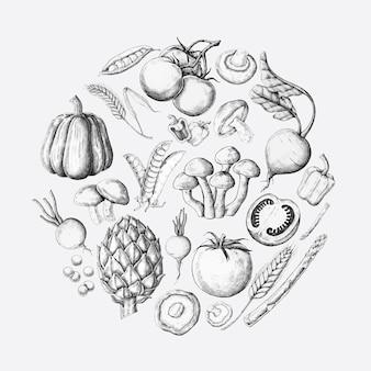 Collection De Conception De Légumes Blancs Vecteur gratuit