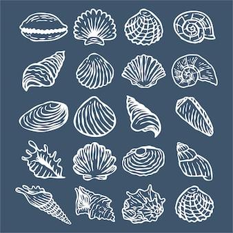 Collection de coquillages en dessin au trait blanc dessiné à la main