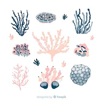 Collection de coraux colorés dessinés à la main