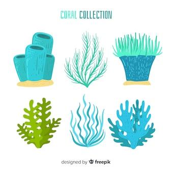 Collection de coraux dessinés à la main