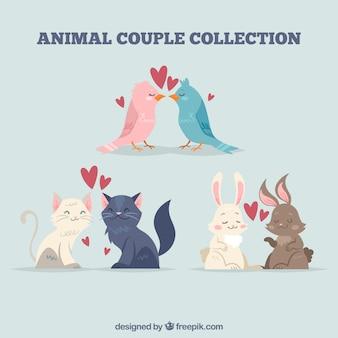 Collection de couples animaux valentine jour plat
