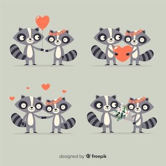 Collection de couples de raton laveur valentine