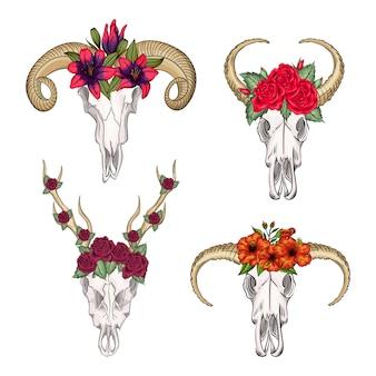Collection de crânes d'animaux sauvages mystiques occidentaux, fleurs imprimées. tête de bohème, animal vintage western.