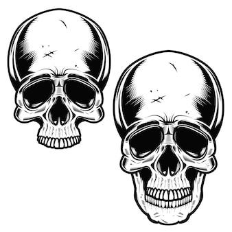 Collection de crânes dessinés à la main en monochrome. illustrations de crânes
