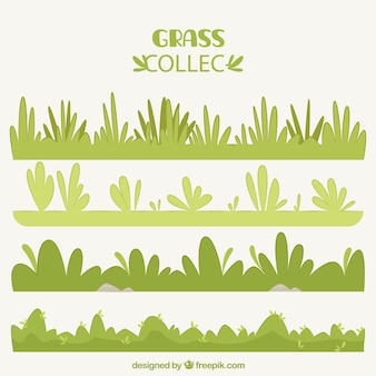 Collection de décoration vert frontières herbe