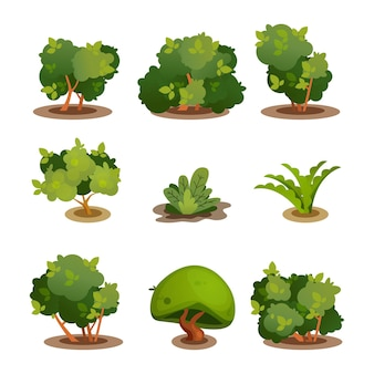 Collection de décotaration de buisson d'arbre