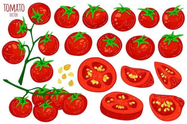 Collection de dessin animé de tomates fraîches.