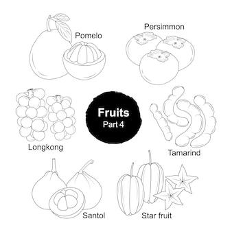 Collection dessinée à la main de fruits frais partie 4