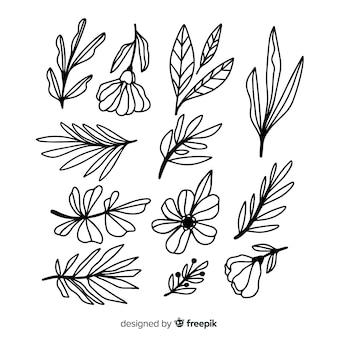 Collection dessinée à la main d'ornement floral