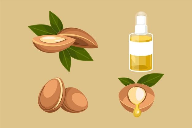 Collection détaillée d'éléments d'huile d'argan