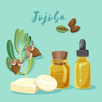 Collection détaillée d'éléments de jojoba