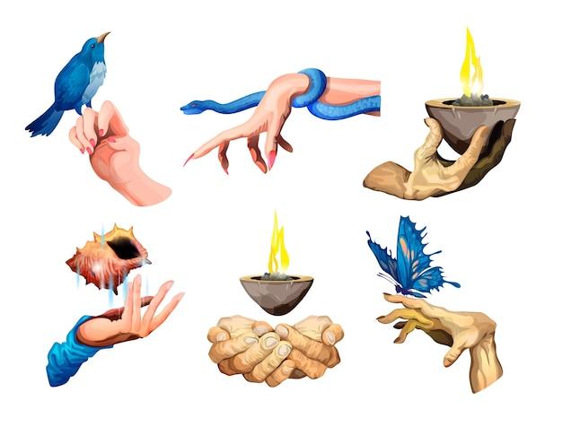 Collection de différentes mains ensemble de bras avec un gros papillon bleu, un serpent, une tasse de feu, un coquillage, un oiseau bleu. illustration vectorielle isolée.