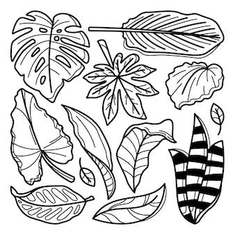 Collection de doodle botanique