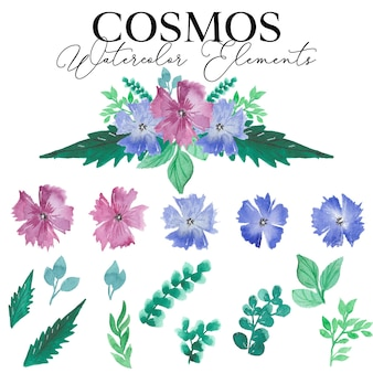 Collection d'éléments aquarelle fleur cosmos