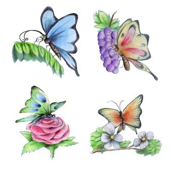 Collection d'éléments aquarelle papillon