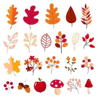 Collection d'éléments automne
