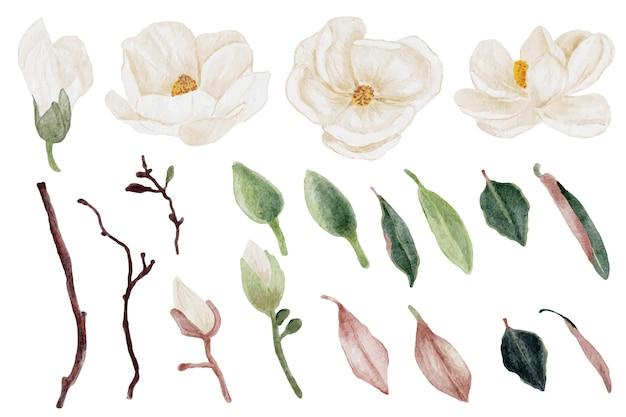 Collection d'éléments de bouquet de fleurs et de feuilles de magnolia aquarelle