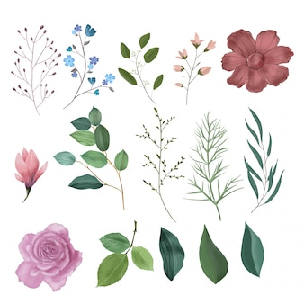 Collection d'éléments floraux aquarelle