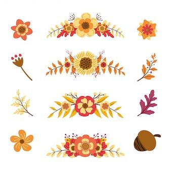 Collection d'éléments floraux d'été