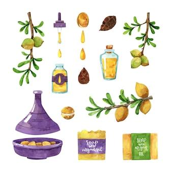 Collection d'éléments d'huile d'argan aquarelle