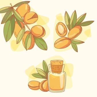 Collection d'éléments d'huile d'argan dessinés à la main réaliste
