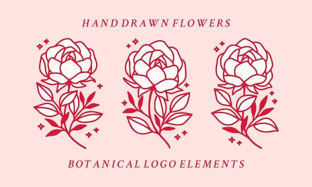 Collection d'éléments de logo fleur pivoine botanique rose dessinés à la main