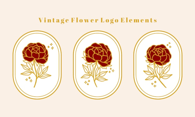 Collection d'éléments de logo fleur pivoine botanique vintage or dessiné à la main