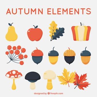 Collection d'éléments naturels d'automne