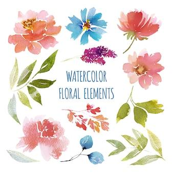 Collection d'éléments vectoriels de fleurs aquarelle